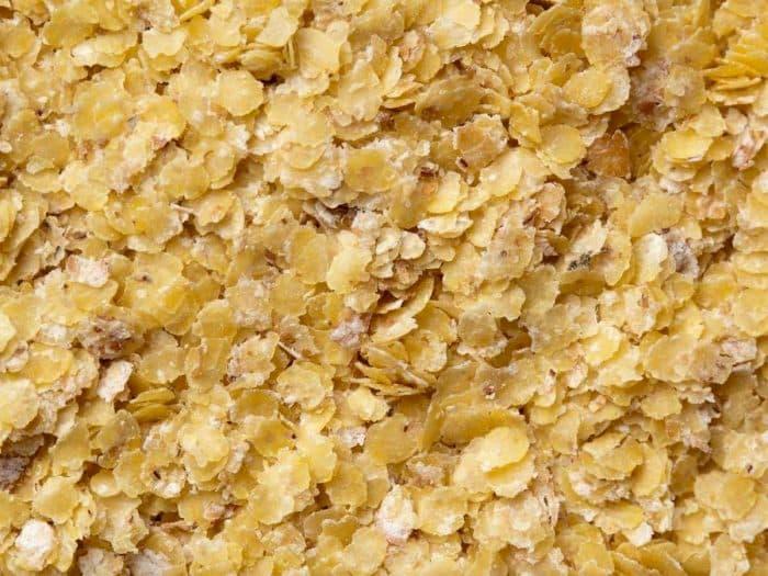 فوائد جنين القمح